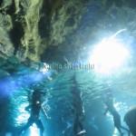 チャーター船で行ってきました。青の洞窟へ