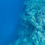 伊良部島•下地島でスキンダイビング